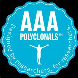 多株抗體也能擁有AAA等級